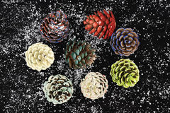 Pinecones painted with different paints Stock Photo