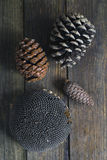 Pinecones and sunflower Stock Images
