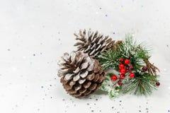 Pinecones und Beeren in einer Winter Weihnachtsszene Kopieren Sie Platz Lizenzfreies Stockbild