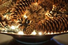 Pineconevertoning met witte lichten Royalty-vrije Stock Afbeelding