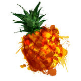 Pineple made of colorful splashes. On white background Stock Images