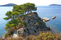 Pines of the beautiful rocky peninsula on the Skiathos Island. Impressive landscape of the rocky peninsula on the Skiathos Island, nearby the Skiathos Town, with royalty free stock images