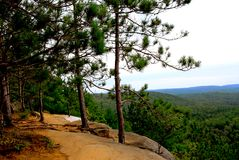 Pines cliffs trail Royalty Free Stock Photos