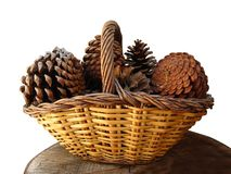 Pines conces in wicker basket royalty free stock photo