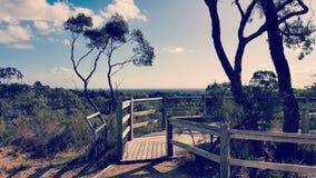 Pines Flora and Fauna Reserve Royalty Free Stock Photos