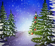 Pines Winter Backdrop Royalty Free Stock Photo