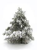 Pinetree en neige de l'hiver Images stock