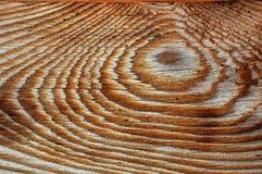 pinewood зерна Стоковые Изображения