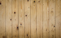 Pinewood wall texture Stock Image