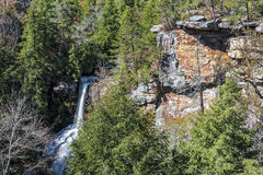 Piney Creek Falls. At Fall Creek Falls State Park In Tennessee Stock Image