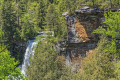 Piney Creek Falls Stock Photography