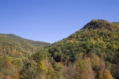 Piney Mountain in Autumn stock images