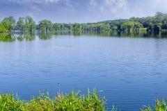 Free Piney Z Lake In Tallahassee, Florida Royalty Free Stock Photo - 164490755