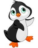 Pingüino del bebé Foto de archivo libre de regalías