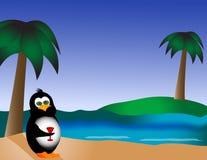 Pingüino en la playa con la bebida Fotos de archivo