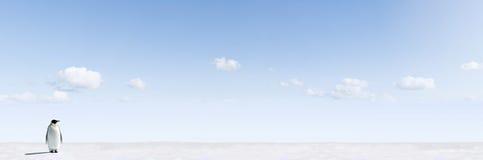 Pingüino en paisaje de los inviernos Fotografía de archivo