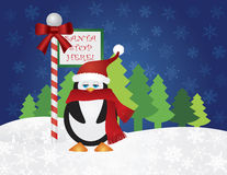 Pingüino en Santa Stop Here Sign Imagen de archivo libre de regalías