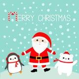 pingüino Oso polar blanco Santa Claus que lleva el sombrero rojo, traje, barba grande, hebilla del cinturón Feliz Navidad Bastón  Imagenes de archivo