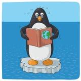 Pingüino que lucha con el cambio de clima Fotos de archivo