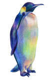 Pingüino real orgulloso coloreado del arco iris del dibujo de lápices fotografía de archivo