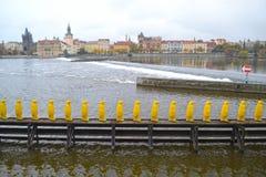 Pingüinos amarillos en Praga Fotos de archivo