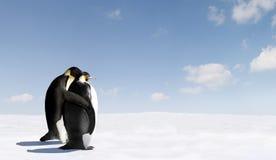 Pingüinos de emperador románticos Foto de archivo