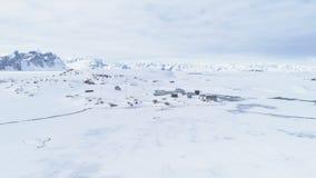 Pingüinos de la Antártida, base de Vernadsky Tiro aéreo metrajes