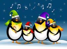 Pingüinos de la Navidad del canto Fotografía de archivo