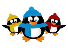 Pingüinos divertidos de la historieta aislados Foto de archivo