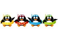 Pingüinos divertidos de la natación Foto de archivo libre de regalías