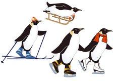 Pingüinos en deportes de invierno Imagen de archivo libre de regalías