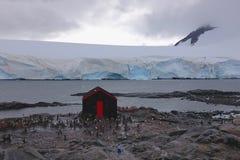 Pingüinos en la estación de Lockroy del puerto en la Antártida Imagenes de archivo
