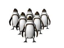 Pingüinos en la punta dos libre illustration
