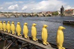 Pingüinos plásticos en orilla imagenes de archivo