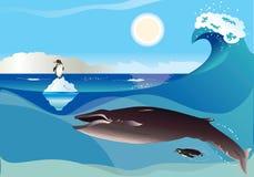 Pingüinos y ballena Imágenes de archivo libres de regalías