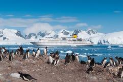 Pingüinos y barco de cruceros de la Antártida Foto de archivo libre de regalías