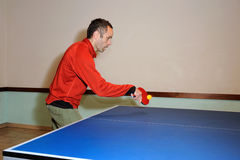 Ping-pong. A table tennis player in training Royalty Free Stock Photo