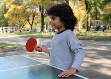 Free Ping Pong Royalty Free Stock Photo - 34410965