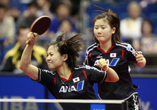 Ping-pong Photo stock
