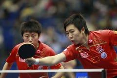 Ping-pong Photo libre de droits