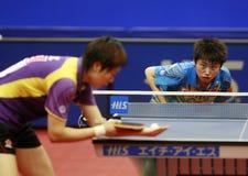 Ping-pong Photographie stock libre de droits