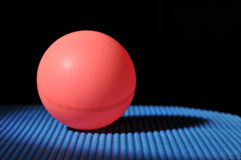 Ping pong ball with table tennis paddle. Close up of a ping pong ball on a paddle Royalty Free Stock Photography