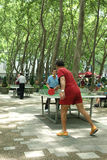 Ping Pong in Bryant Park Stock Photos