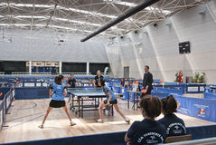 Ping pong match Royalty Free Stock Photo