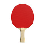 Ping Pong Paddle Fotografie Stock