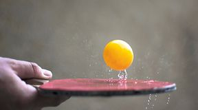 Ping pong racquet hitting a ball. Motion action concept of table tennis sport royalty free stock images
