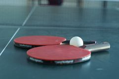 Ping pong set. Ping pong rackets on a table Stock Image