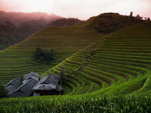 Ping an rice terraces Stock Images