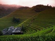 Ping an rice terraces. Near Guilin (Guangxi, China stock images