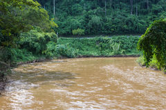 Ping River. The Ping River, Nature in rainy season Royalty Free Stock Photos